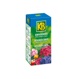 Reverdecente_200ml_KB